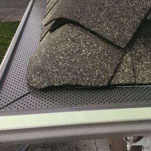 17. Gutter Guards & Cleaning