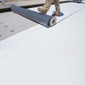 Thermoplastic Polyolefin roofing service toronto